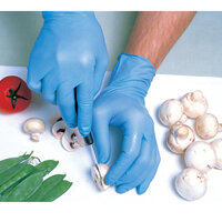 Food Preparation Gloves