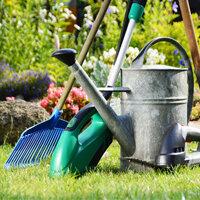 Garden Cleaning