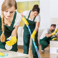 Multi-Surface Cleaners