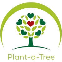 Plant A Tree Desks