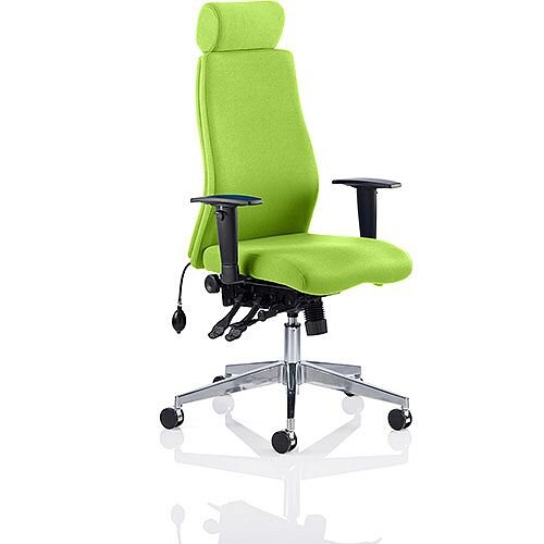 Onyx High Back Ergonomic Posture Office Chair With Headrest Swizzle Green With Arms