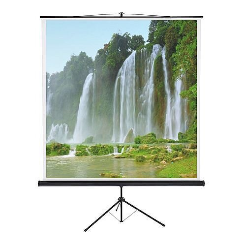Franken Tripod Projection Screen ValueLine W:2000xH:2000mm Format 1:1 LWST220