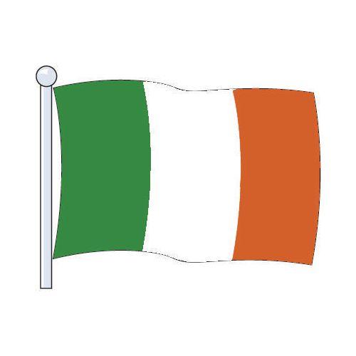 Flag Eire Medium 229x114