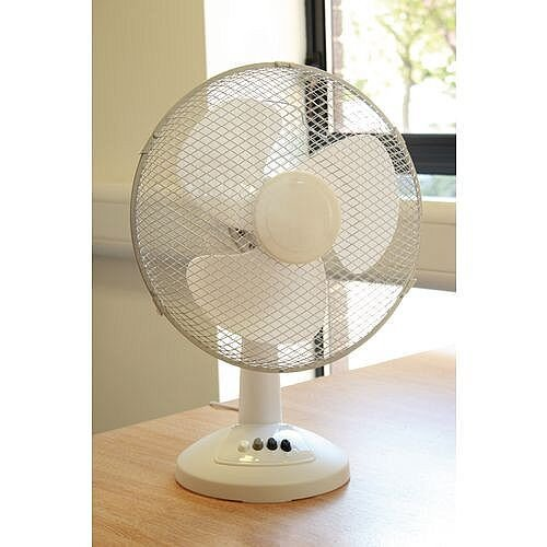 Oscillating Desk Fan 12 In