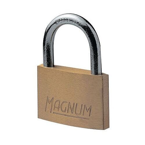 Economy Brass Padlock 11mm Shackle Pack of 2