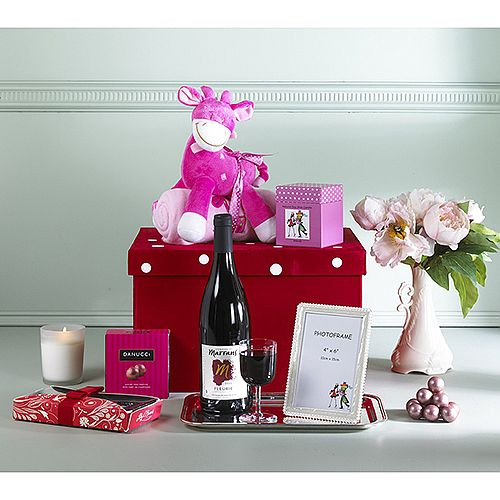Welcome Home Baby Girl Gift Basket