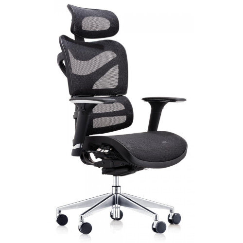 Dorsum Executive Ergonomic Mesh Chair with Headrest Black