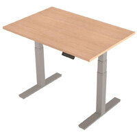 1200x800mm Height Adjustable Rectangular Sit-Stand Desk Maple with Silver Frame
