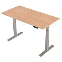 1600x800mm Height Adjustable Rectangular Sit-Stand Desk Maple with Silver Frame