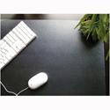 Ecotex Clear Desk Mat W560 x D430mm