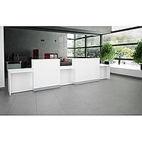 Organic Modern Illuminated Straight White Reception Desk with Decorative Element W4556mmxD770mmxH1105mm