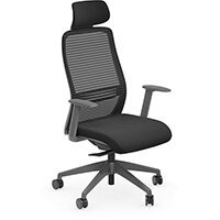 NV Posture Office Chair with Contoured Mesh Back and Adjustable Lumbar Support & Headrest Black With Grey Frame