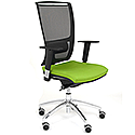 Ergonomic Mesh Task Chair With Lumbar Support & Adjustable Arms Black/Green OZ Series