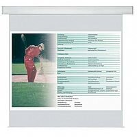 Franken PRO W2000 x H2000mm Electric Roll-Up Projection Screen