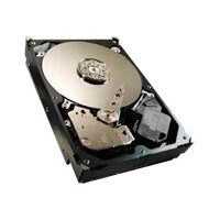 "Seagate Video 3.5 HDD ST500VM000 - Hard drive - 500 GB - internal - 3.5"" - SATA 6Gb/s - 5900 rpm - buffer: 64 MB"