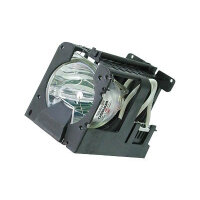 Optoma - Projector lamp - for EzPro 705H, 715H, 718