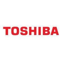 Toshiba - Power adapter - 65 Watt - black - for Dynabook Toshiba Portégé Z30; Toshiba Satellite Pro C70; Satellite C55, C70, L50, L70, P50