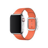 Apple 40mm Modern Buckle - Watch strap - Large - sunset - demo - for Watch (38 mm, 40 mm)