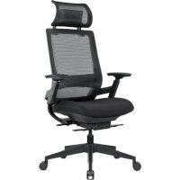 Ergonomic Mesh Office Chair with Headrest Adjustable Lumbar Support & Arms Black