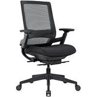 Ergonomic Mesh Office Chair with Adjustable Lumbar Support & Arms Black
